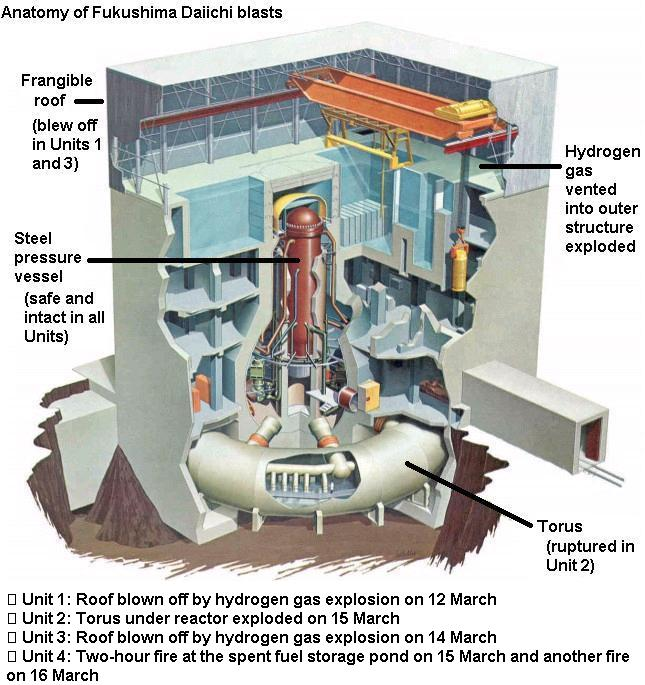 Fukushima Dai-ichi Nuclear Reactor Accident | How On Earth
