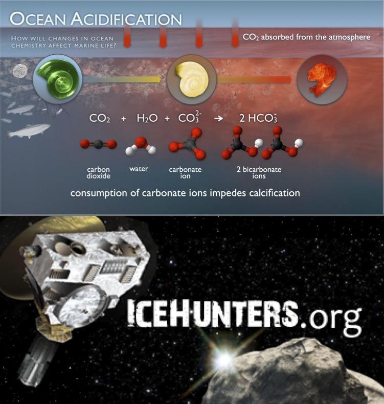 Ocean Acidification // Citizen Science