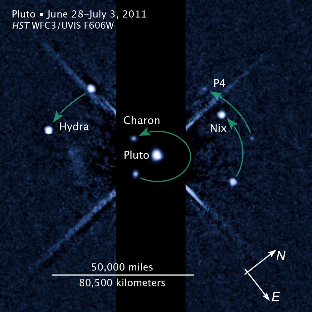 Pluto's Moons // Wildlife Preservation