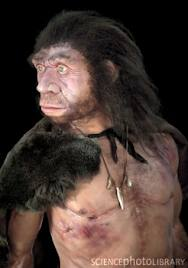 Neanderthals//Antarctica