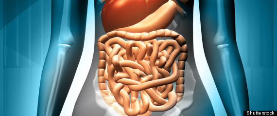Fecal Microbial Transplant for C. Diff Colitis