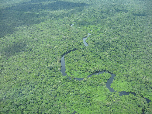 CO2 from the Amazon // US Smokestacks