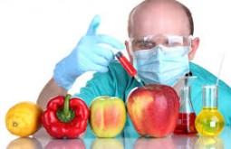 Are GMOs Environmentally-friendly?