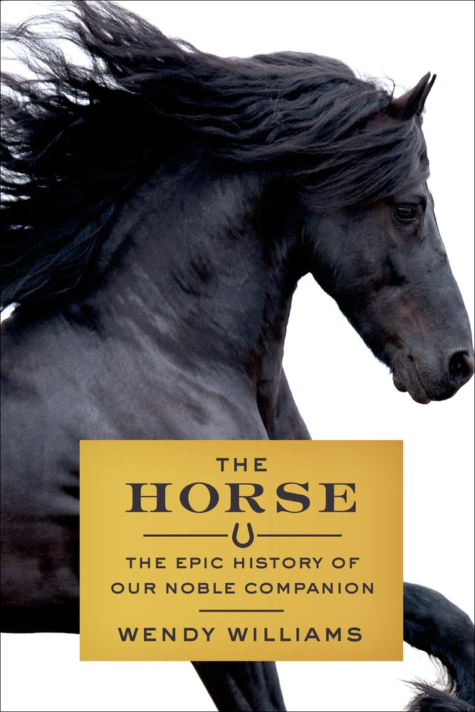Evolution of the Human-Horse Bond