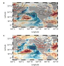 credit Karen McKinnon - Pacific ocean and atmosphere can predict a heat wave in the Eastern US.