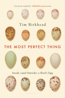 The Most Perfect Thing Book Cover