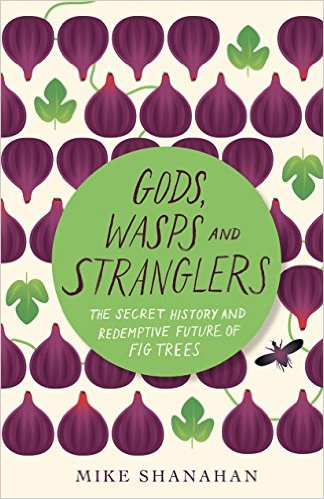 Of Wasps and Figs