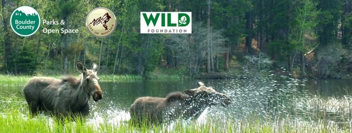Long Now Foundation in Colorado // Wild Boulder Citizen Science