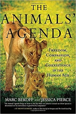 Animals Agenda Book