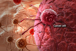 A New Theory of Cancer