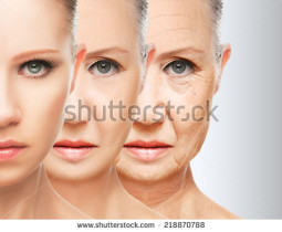 Aging Research Part 2