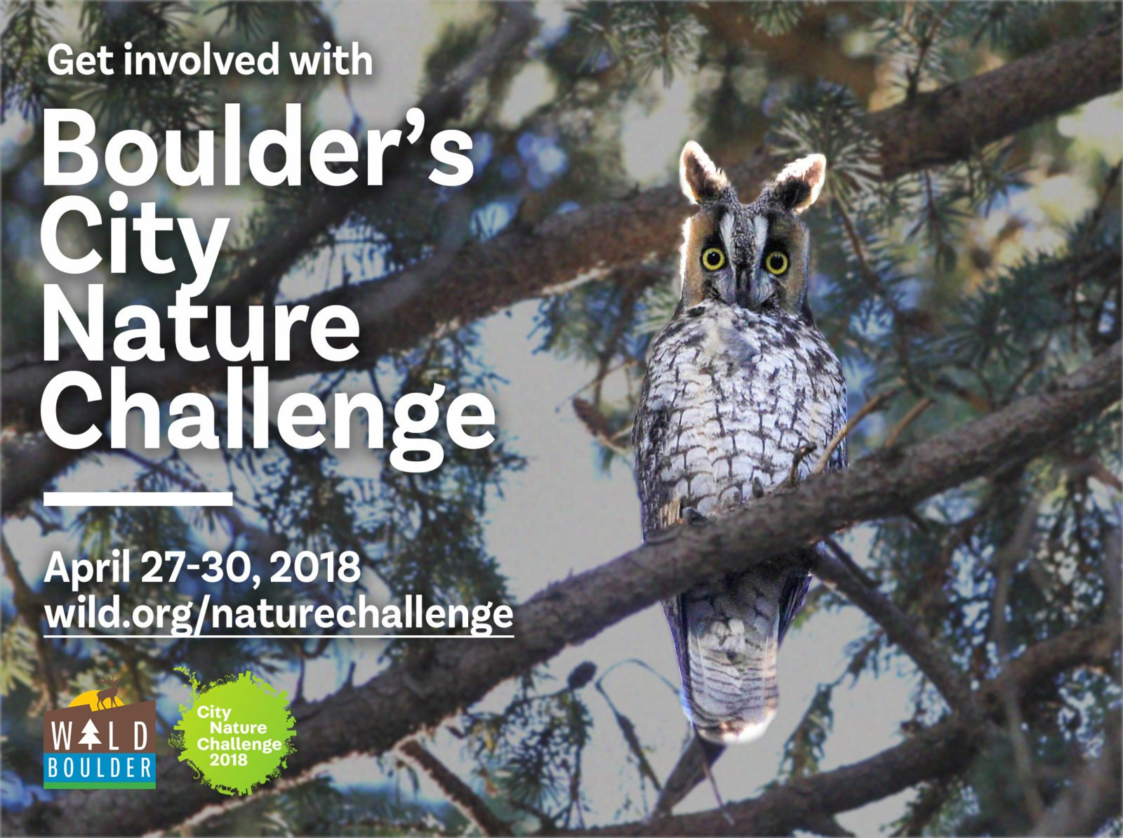 City Nature Challenge BioBlitz Citizen Science enhanced with iNaturalist