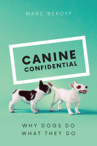 CanineConfiidential