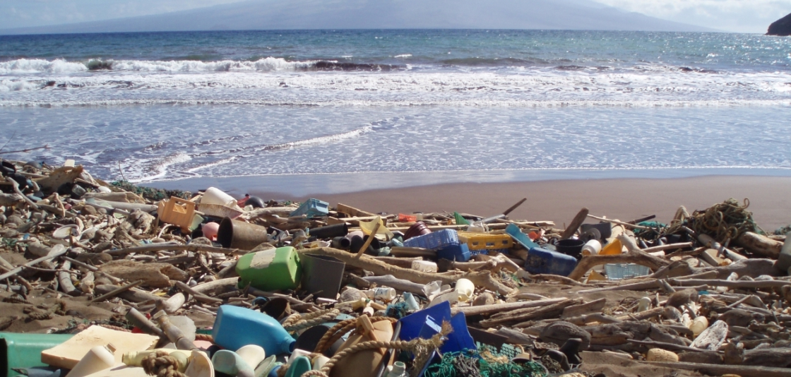 Plastic Pollution & Solutions