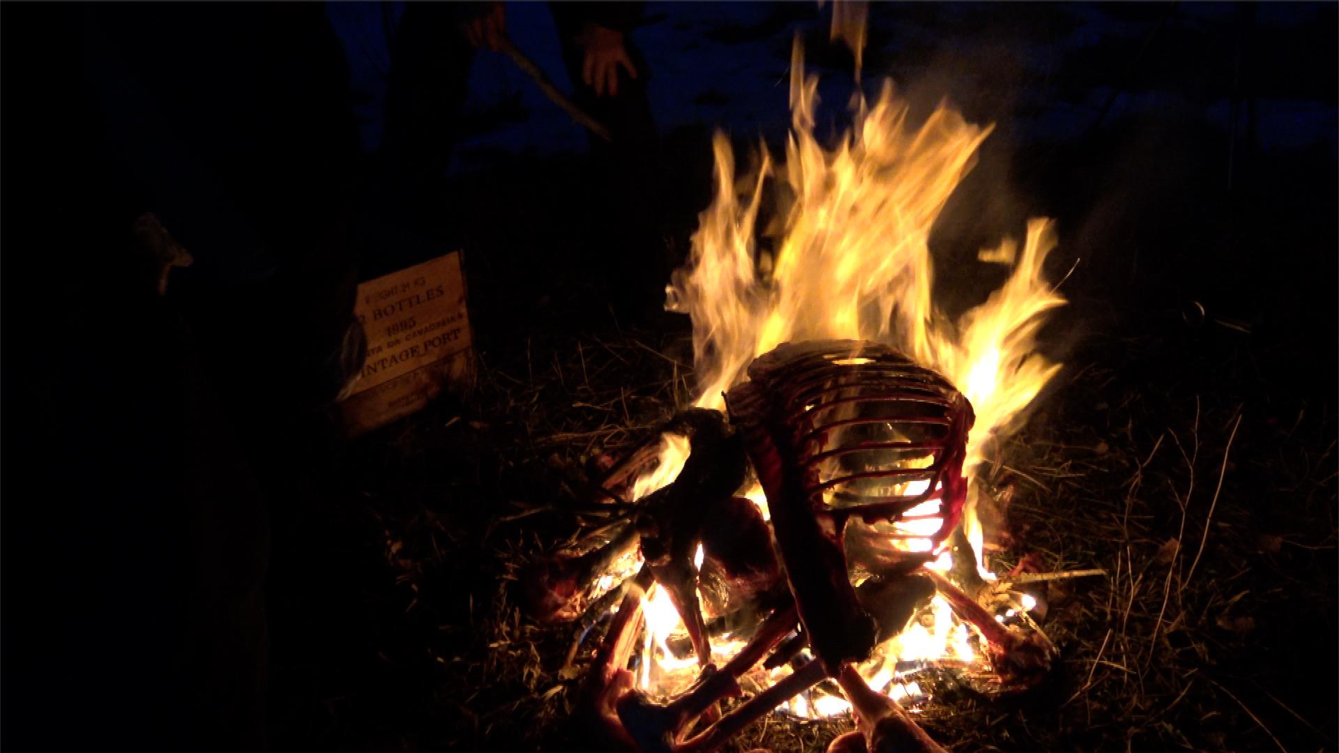 Ice Age Bone Fire // Backcountry Skiing & Wildlife